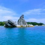 bird-island