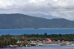 Festival Teluk Humboldt @ Papua